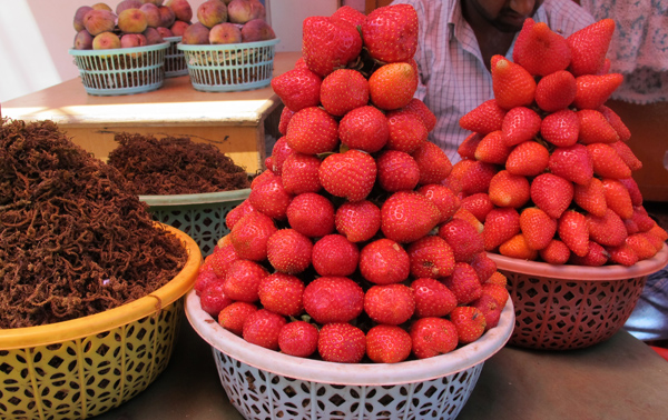 mahabaleshwar strawberries
